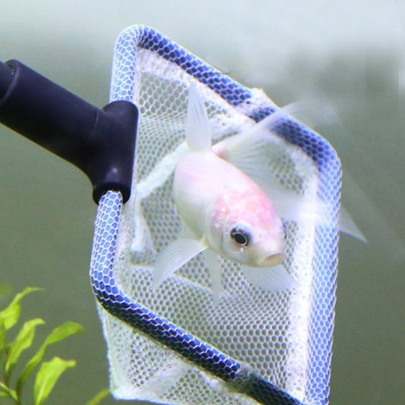 Réservoir d'aquarium Kit de nettoyage complet Filet à poissons Râteau à gravier Râpe à algues Raclette à fourche Éponge Brosse Verre Kit de nettoyage pour aquarium