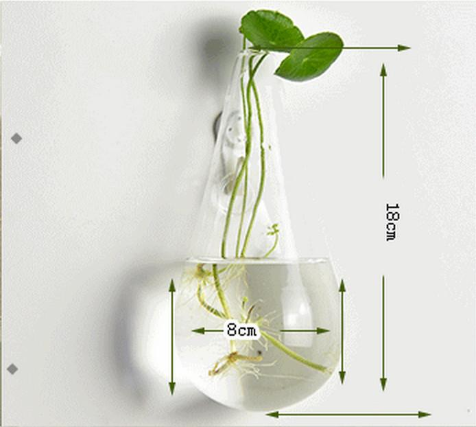 Creativo semicircolare trasparente appeso vetro idroponica vaso vaso verde ravanello vaso muro pesce serbatoio Soggiorno decorazioni murali