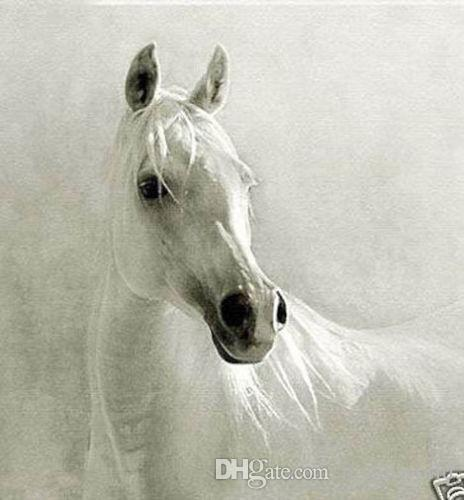 Online Cheap Framed The White Horse,Genuine Pure Handpainted Animal ...