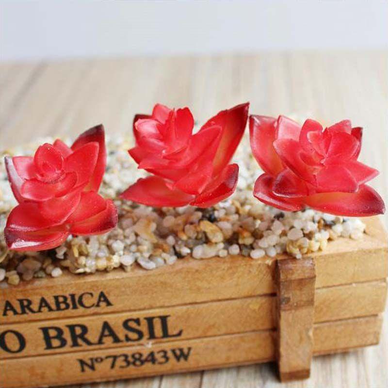 2017 새로운 인공 붉은 즙이 많은 식물 인공 Miniascape / 분재 / 화분 된 홈 발코니 장식 장식 꽃 무료 배송