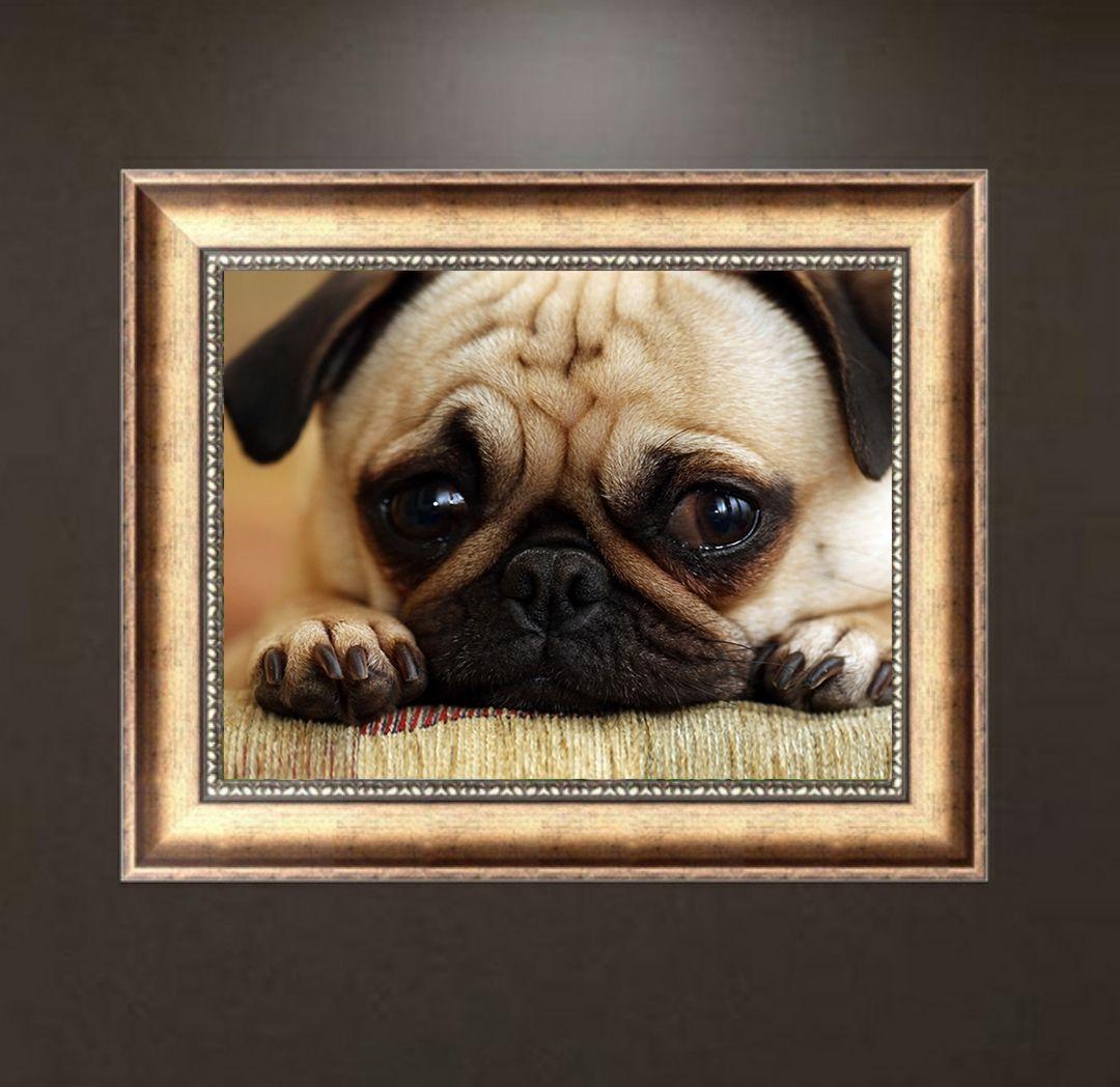 The Sad Dog Pug Print Diamond Embroidery DIY Needlework Diamond Painting Cross Stitch 5D Rhinestones Painting Home Decor Without Frame