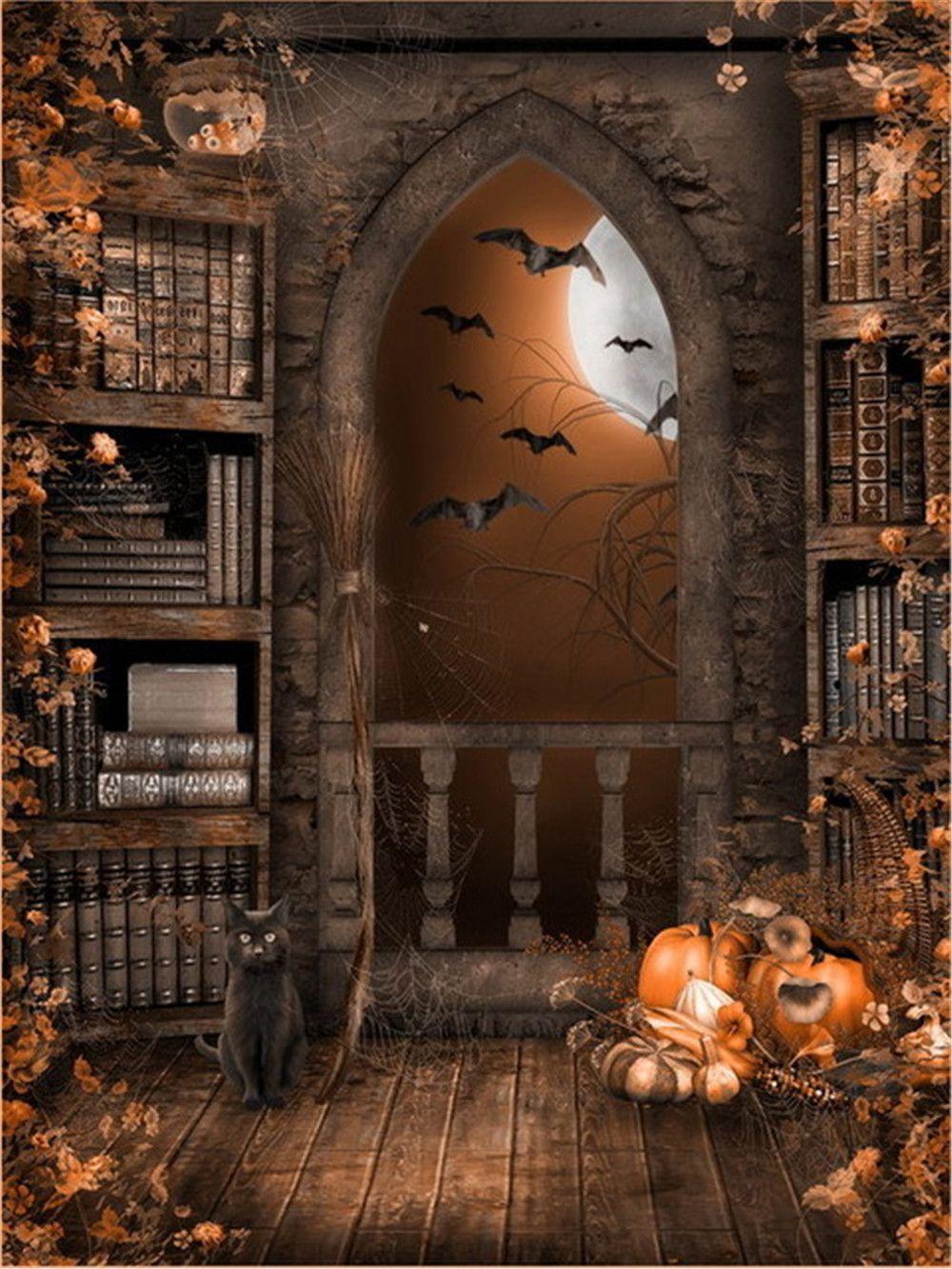 2018 Vintage Castle Indoor Bookshelf Photo Backgrounds