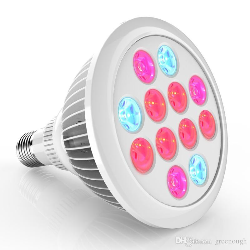 Led Grow Lights E27 12W 24W 9W LED Plant Growing Bulbs Led Grow ...
