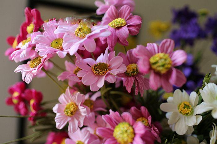Großhandel 50 teile / los PE Real Touch künstliche Kamille Blumensträuße Mit 5 Köpfe 6 Farben für Hausgarten Hochzeit Dekorationen Kostenloser Versand
