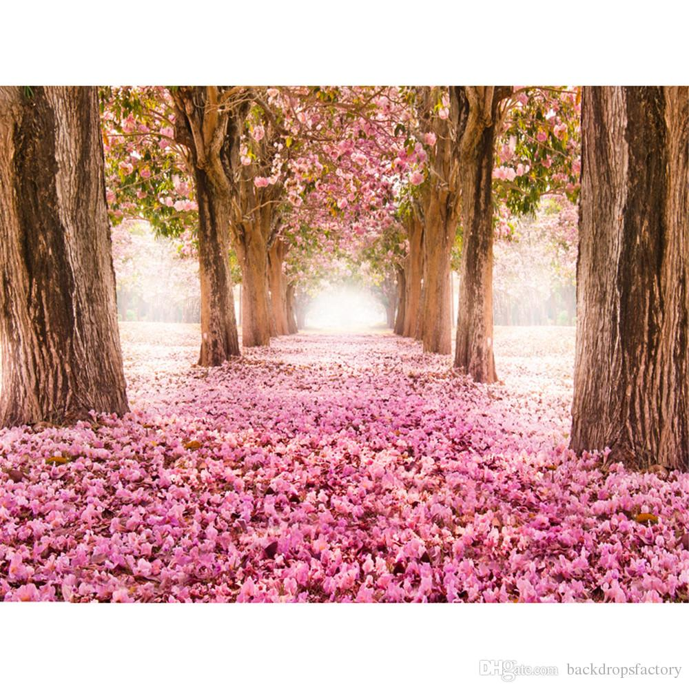 2019 Pink Flowers Cherry Blossoms Backgrounds For Studio Petals