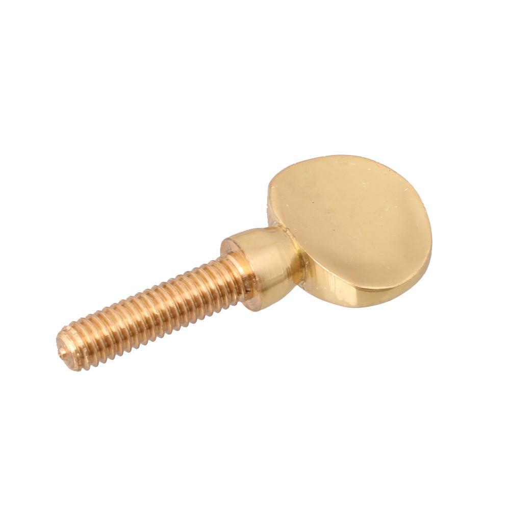 Befestigungsschraube für Halsempfänger für Saxophon Gold