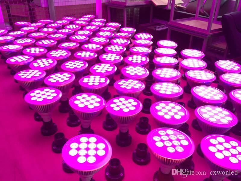12W 24W menée élèvent la lumière E27 PAR38 usine menée hydroponique élèvent l'ampoule pour la serre chaude AC85-265V