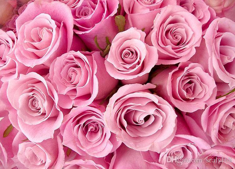 Las semillas del arco iris rosa colorida semillas de Rose envío Rojo Violeta Negro Blanco Rosa Azul Verde Amarillo semillas color de rosa / bag HH7-141