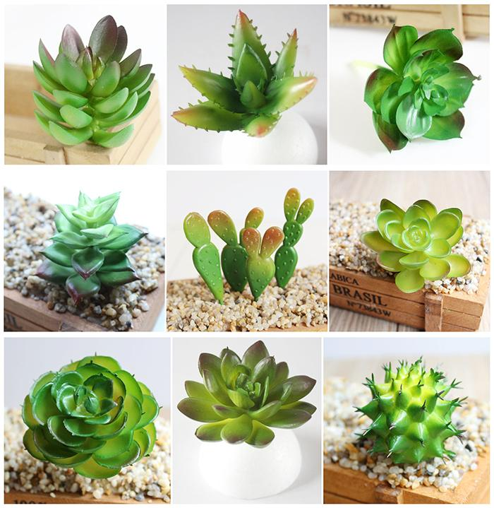 Charming Artificial Different Succulents Emulational
