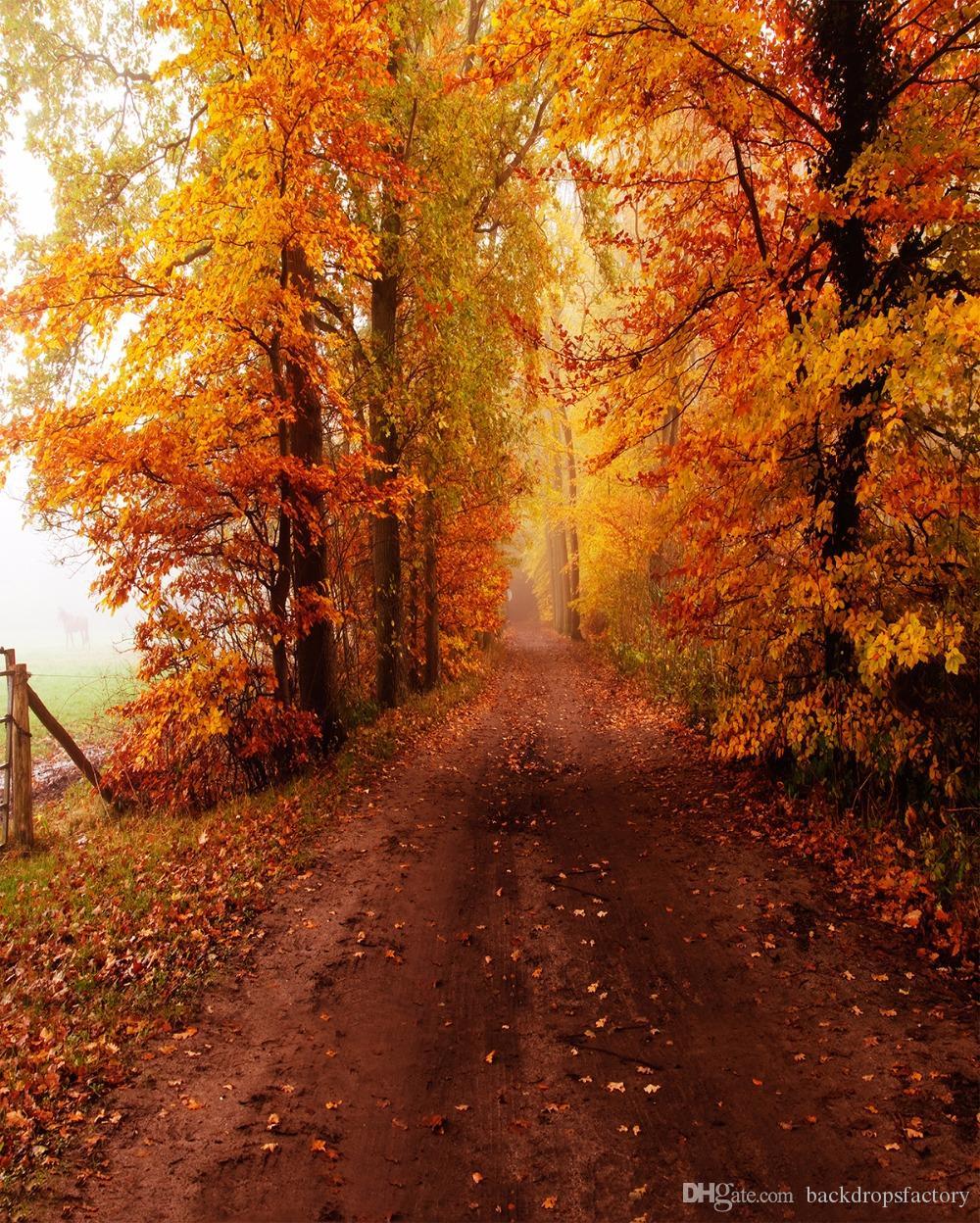 2018 5x7ft Autumn Scenic Photography Backdrops Vinyl Cloth