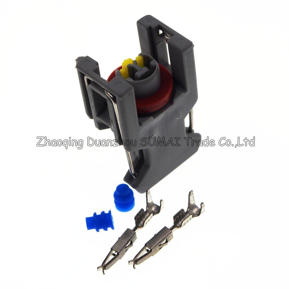 Spina ugello spruzzatore / ugello olio motore 2Pin, spina elettrica auto connettore Delphi molti utilizzi auto