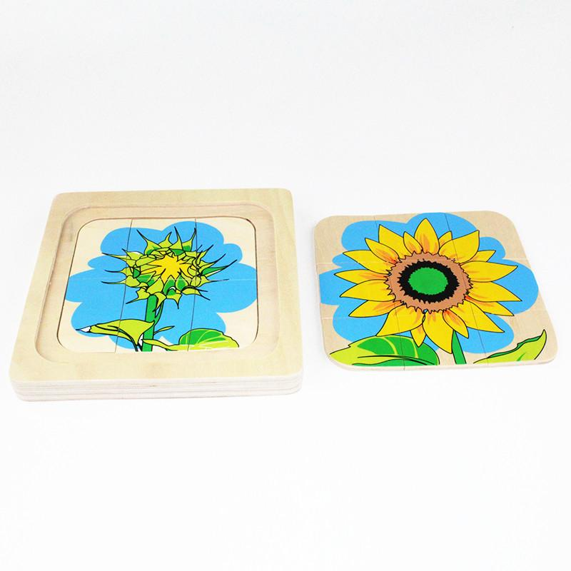 Wholesale- Montessori Kids Baby Toy Infant Toddler Life Cycle of Sunflower Puzzles Jingsaw Preschool Brinquedos Juguets