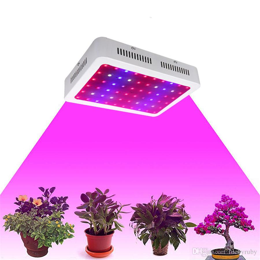 Us Stock 600 1000 1200w Led Grow Light Full Spectrum Ir