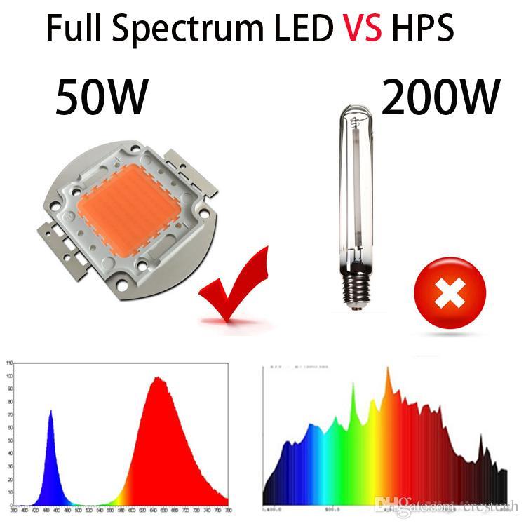 السلطة العليا 10W 20W 30W 50W 100W LED مصباح مصلحة الارصاد الجوية لمبات رقاقة IR الطيف الكامل نمو الخفيفة