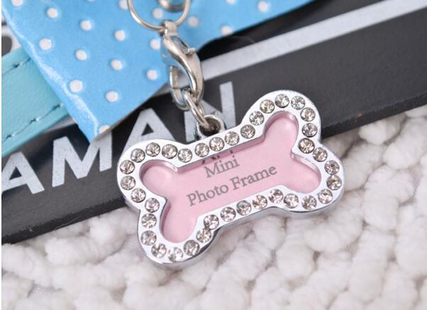 Moda Kolye Pet Etiketi Set Köpek Kemikleri Şekilli Adı Kart Kemik Kayıp Köpek Kimlik Adres Adı Etiket Etiketi Pet Köpek Kolye