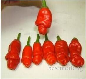 seeds / pack Gartenpflanzen Peter Pepper Seeds rote scharfe Chilischoten Sehr einzigartige Gartendekorationen