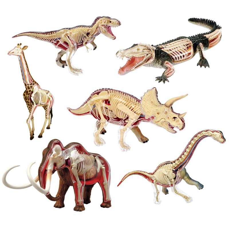 2018 Animal Vision Anatomy Dinosaur Giraffe Wrist Dragon Tiger ...