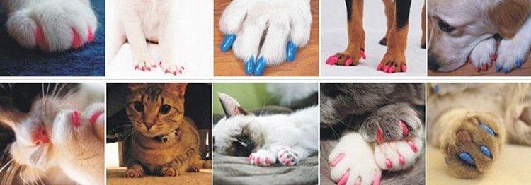 Мягкая собака кошка Лапа Коготь красочные Pet щенок котенок ногтей крышки клей Клей управления ногтей протектор крышки комплект 20 шт./лот