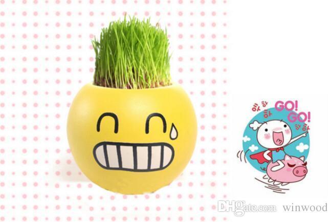 Mini Pots QQ Expression Mini Plants Magic Grass Planting Office Bonsai Plant Pots Gift Desktop Garden Decoration