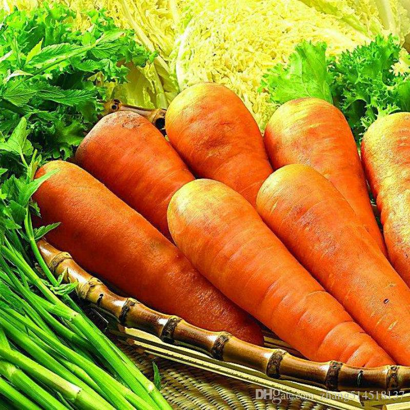50 bag five inches ginseng carrot seeds carrot seed potted fruit vegetable seeds for home garden planting sementes