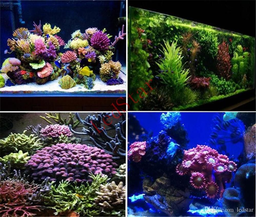 2017 New Arrival 165 W 300 W conduziu a luz do aquário 55 * 3 W / 60 * 5 W lâmpada Leds Coral Reef Crescer Luz de Alta Potência Fish Tank LED Aquarium Light