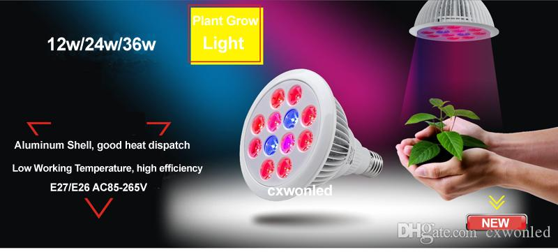 12W 24W Led Grow Light E27 PAR38 Planta Led hidropónico Grow bombilla para Invernadero AC85-265V