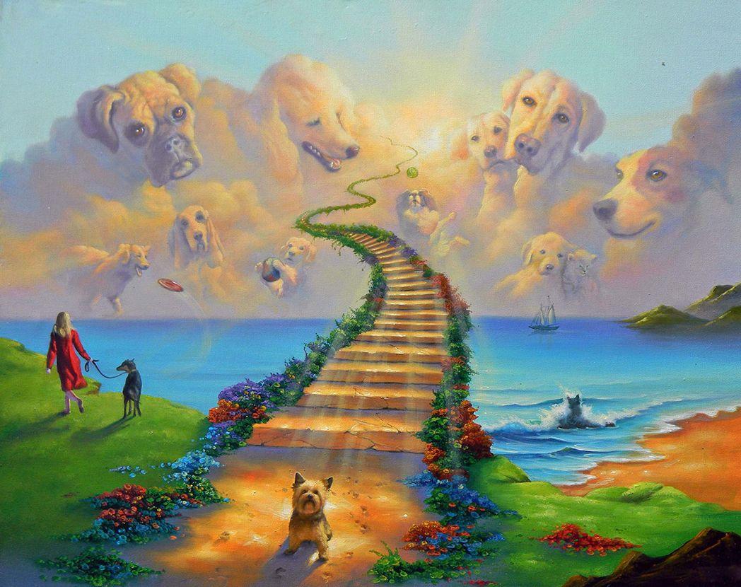 2019 rainbow bridge all dogs go to heaven art print on canvas no
