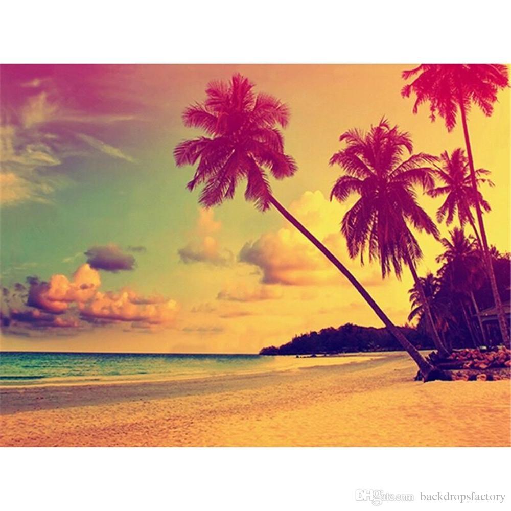Compre Palmeras Puesta Del Sol Playa De Arena Fotografía De Fondo