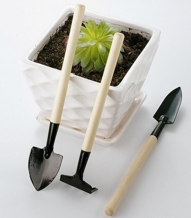 1 Ensemble = Mini Outils de Jardin Kit Petite Pelle Râteau Pelle Poignée En Bois Tête En Métal Enfants Jardinier Usine De Jardinage Outil