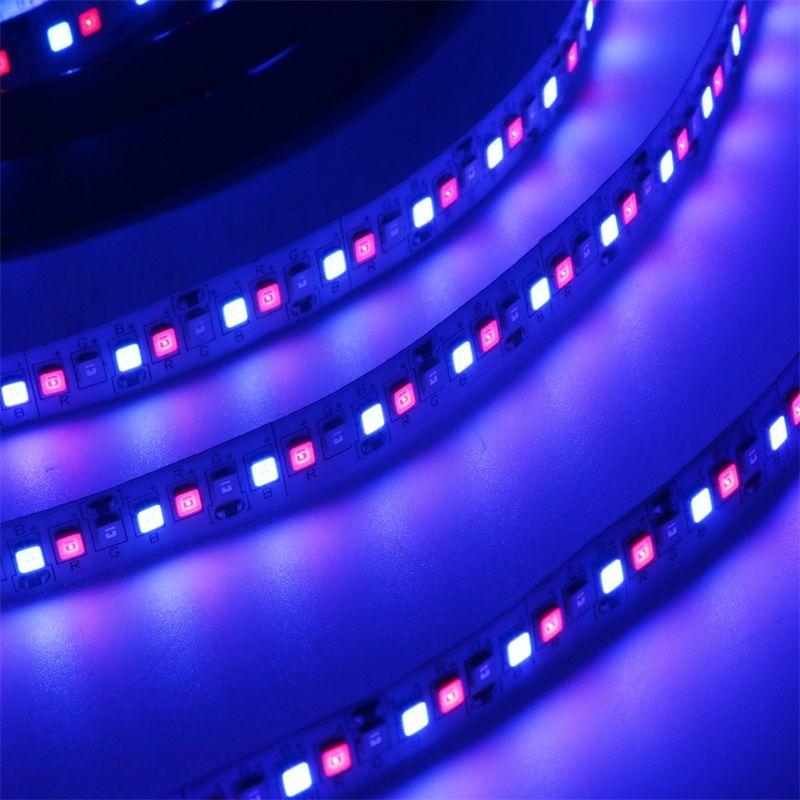 Nueva llegada LED FLEXIBLE LIGHT STRIP 234 SMD 2835 LEDS 12V DC Tiras de luz no impermeables LED LED Cinta DIY Navidad Holiday Home Dic