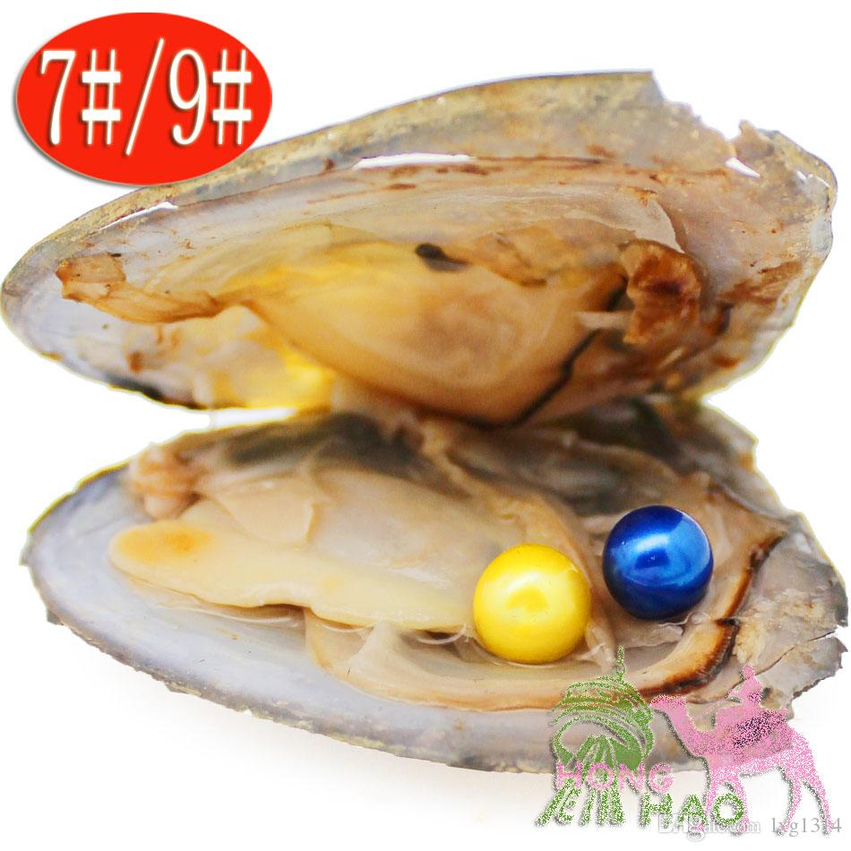 Love pearl party amazing gift vacuum packaging round 6-7 mm round twins pearl freshwater cultured Akoya oyster shell