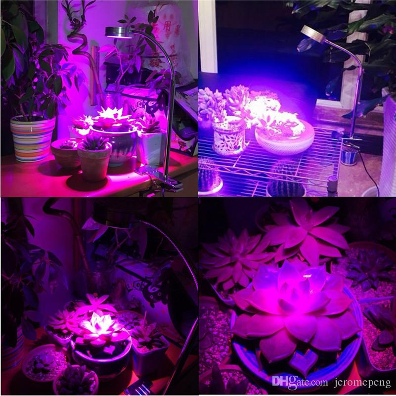 LED Plant Grow Light 7W Desk Clip Lamp with Flexible 360 Degree Gooseneck Arm and Spring Clamp For Indoor Plants Greenhouse