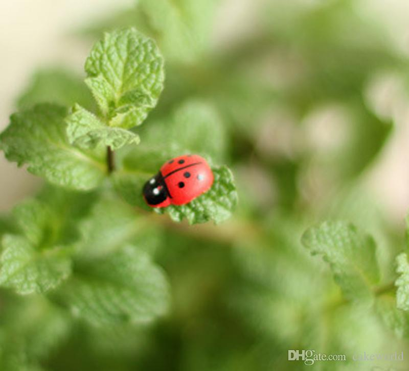 mini Beetle Ladybug Fata gnomi da giardino in resina artigianato Figurine ornamenti Dollhouse bonasi decor