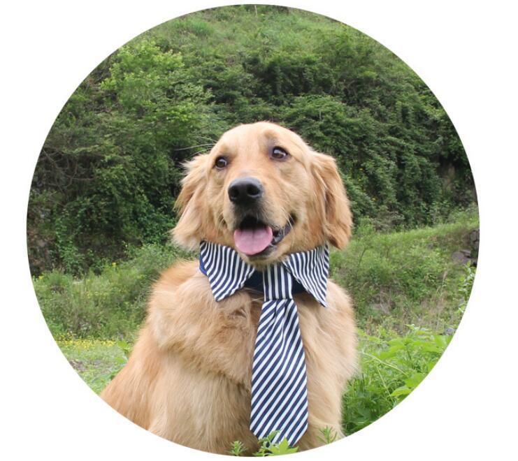 Mavi Kırmızı Kahve 2017 Çizgili Büyük Köpek Için Büyük Köpek Kravatlar Pet Köpekler Ayarlanabilir Kravatlar Tımar Yay Bağları Pet Aksesuarları Köpek giyim