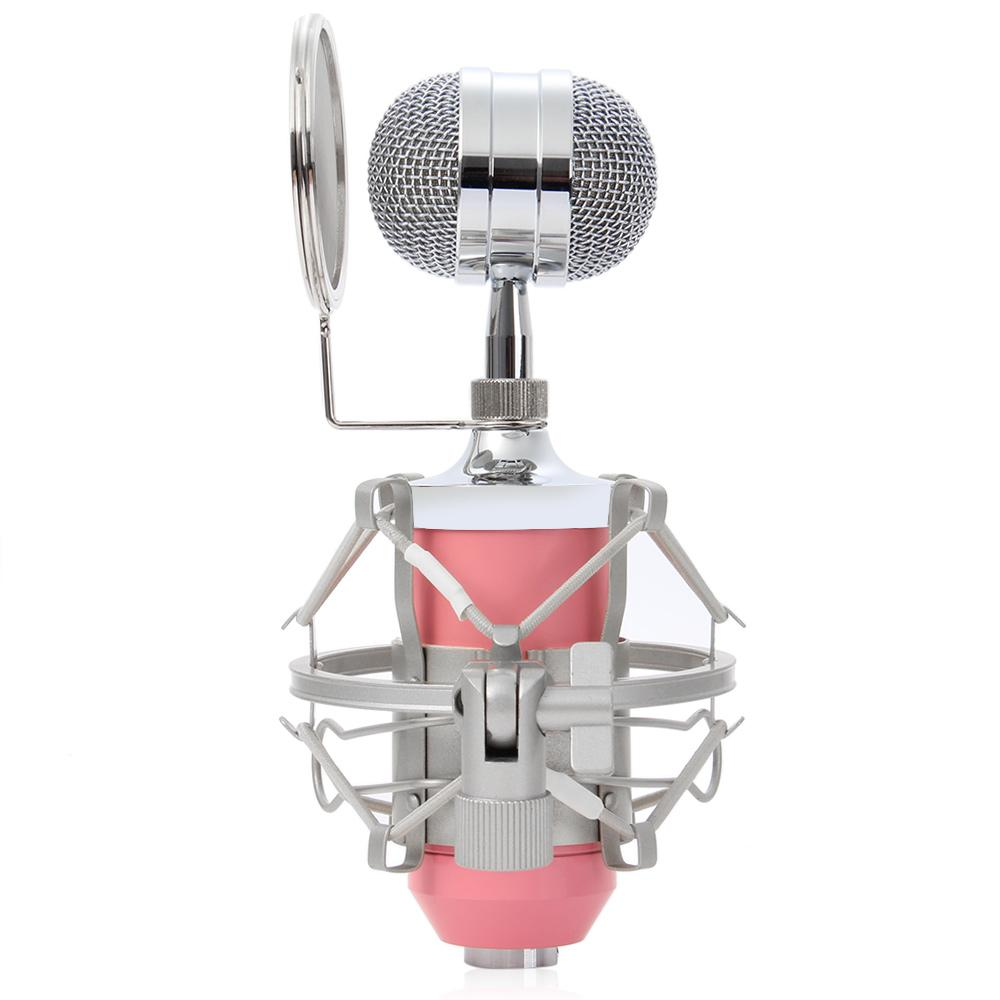BM-8000 Professional Recording Condenser Sound Studio Microphone with 3.5mm Plug Stand Holder Pop Filter for KTV Karaoke