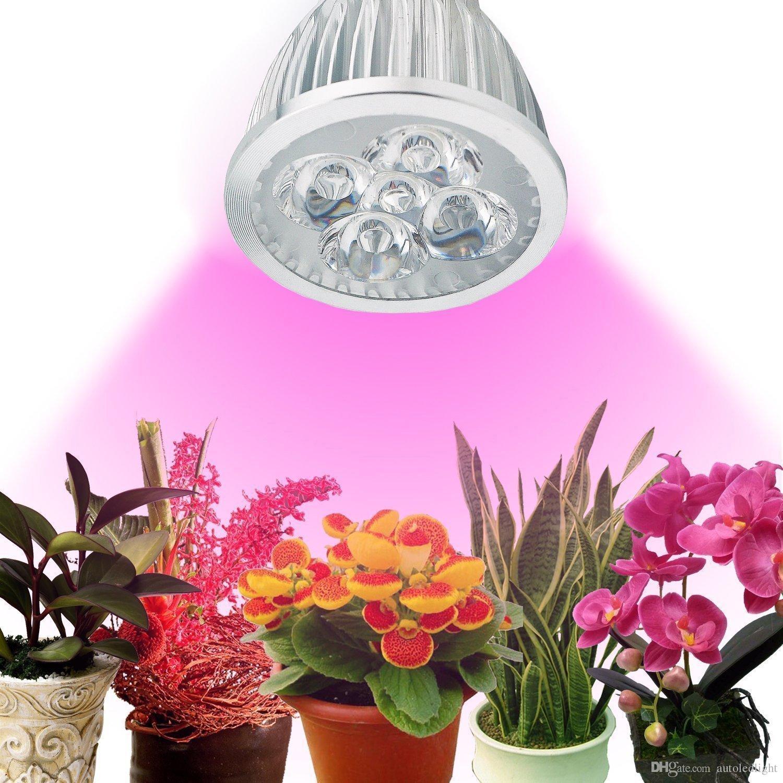 LED planta crescer luz 5W E27 Grow Lâmpada vermelho / azul para a planta Flor Indoor hidroponia Sistema