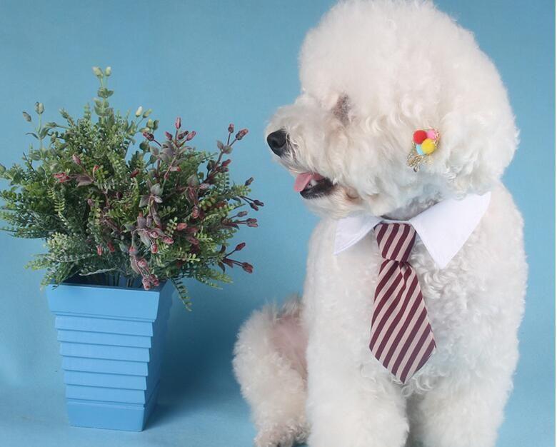 2017 Nueva Mascota Collar de Corbata a Rayas Perro Gato Arco Lindo Perro Corbata Boda Ajustable Cachorro mezcla Rojo / Azul / Caqui