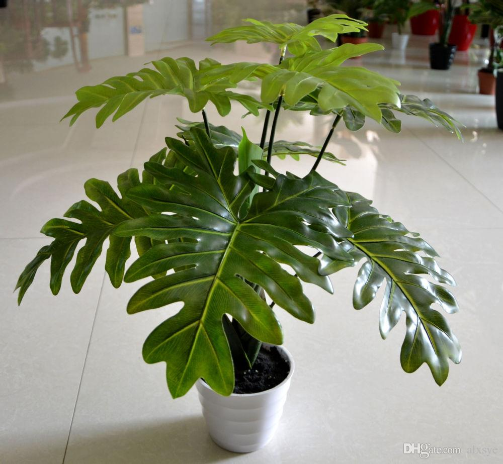 home decoration with plants - talentneeds -