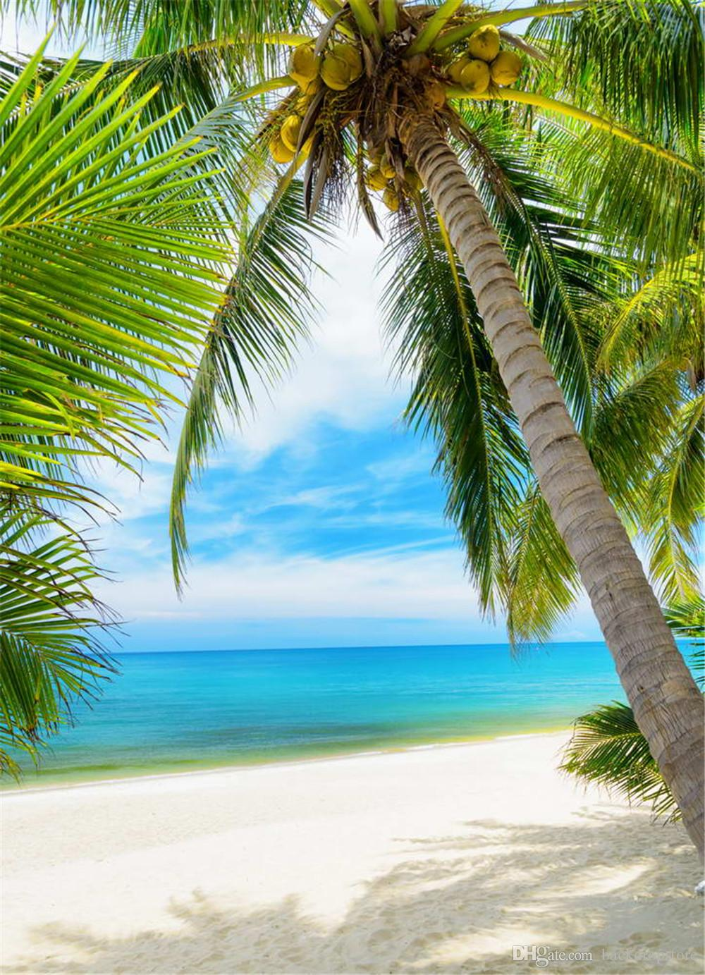2019 Tropical Beach Portrait Photography Backdrops Coconut Tree Blue