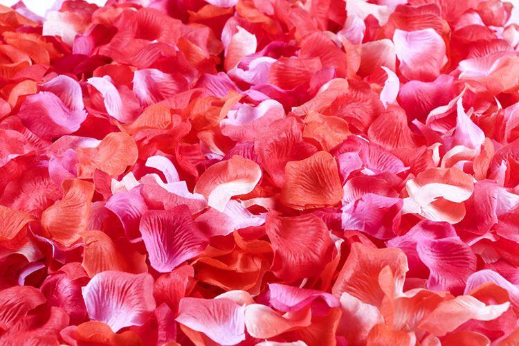 Rose Petals Wedding Flower Fabric Petal Wedding Party Decor Favor Centerpieces Accessories Multi Colors New