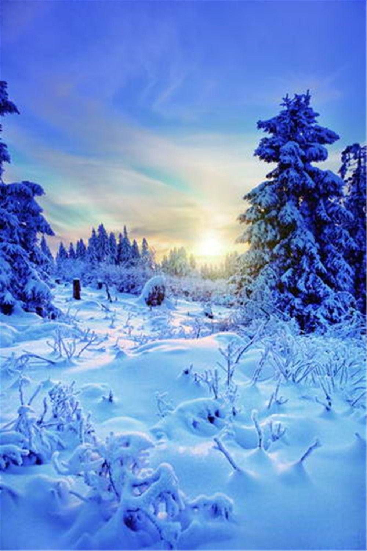 2018 fantastic winter scene photography backdrops vinyl thick snow
