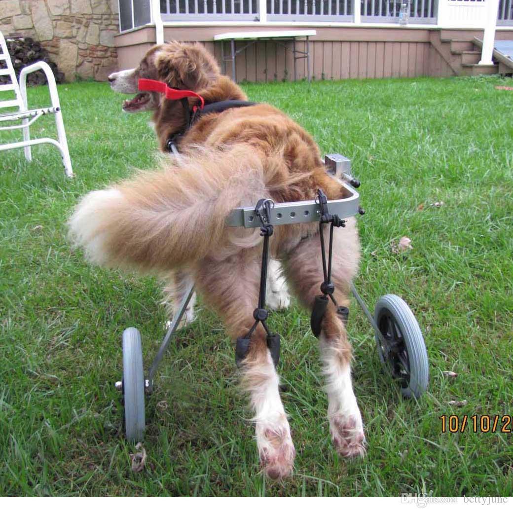 2018 M Pet Wheelchair Dog Car Zimmer Frame Lightweight Walking ...