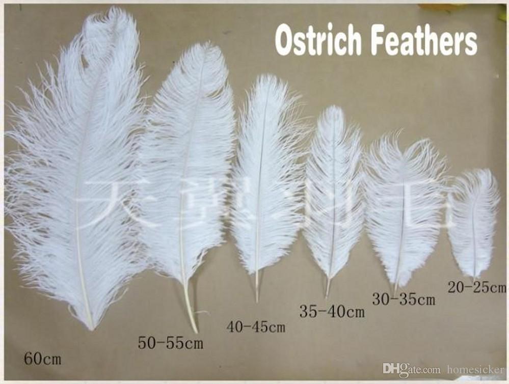 300 Stücke Pro Los 15~20 cm weiß Straußenfeder Plume Handwerk Liefert Hochzeit Tisch Mittelstücke Dekoration kostenloser Versand