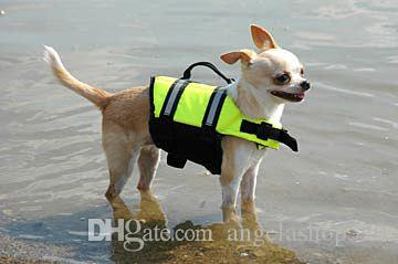 chalecos salvavidas para perros uruguay