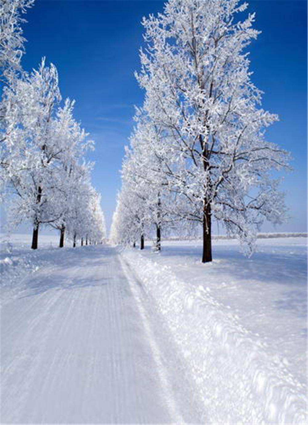 acheter ensoleill bleu ciel hiver scenic photographie d cors neige route arbres blancs en plein. Black Bedroom Furniture Sets. Home Design Ideas