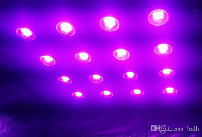 Most powerful led grow light