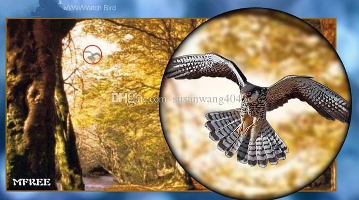 Phone Monoculars lens Binoculars Fixed Focus phone Camera 8x zoom Optical Magnification for iPhone 7 6s plus Galaxy s7 s6 DHL free SZU015