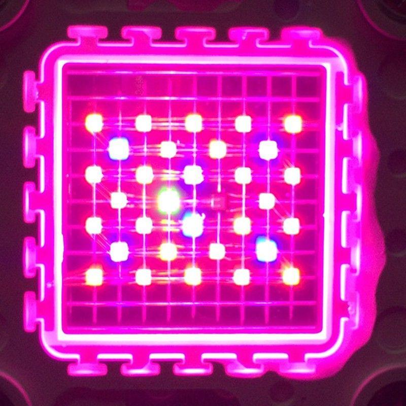 CE,FCC,ROHS High-quality full spectrum anti-rust material 1200W cree led grow light 1200W 1600W 2000W Led Grow Light