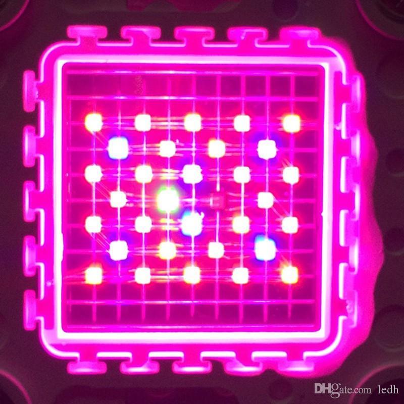 CE, FCC, ROHS Yüksek Kaliteli tam spektrum anti-pas malzeme 1200 W cree ışık büyümeye yol açtı 1200 W 1600 W 2000 W Led Büyümek Işık