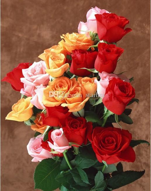 Nuovi semi di Rosa Spedizione gratuita Colorful Rainbow Rose Semi Viola Rosso Nero Bianco Rosa Giallo Verde Blu Semi di rosa 100 pezzi / borsa WX-P01